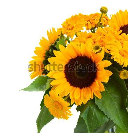sunflowers  and marigold flowers Stock photo © neirfy