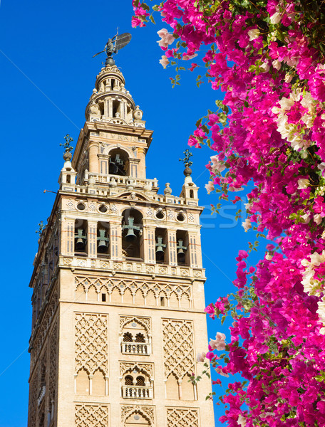 Bell tower Giralda, Seville, Spain Stock photo © neirfy