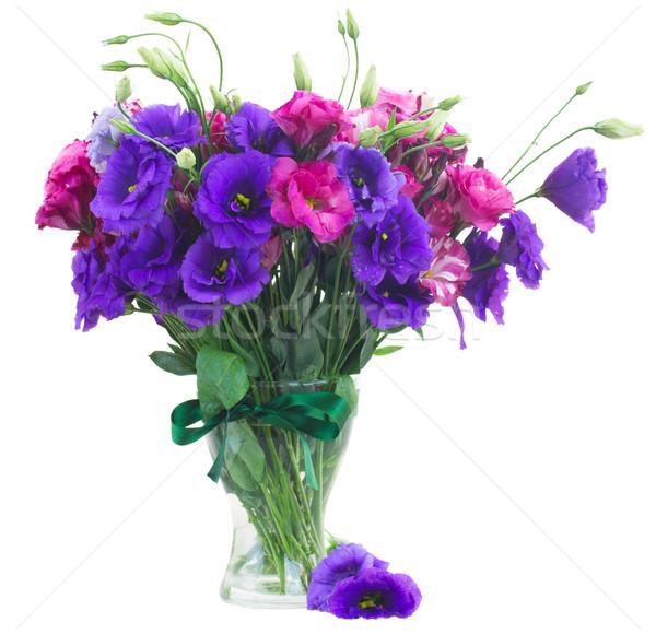Köteg mályvaszínű virágok orgona váza közelkép Stock fotó © neirfy