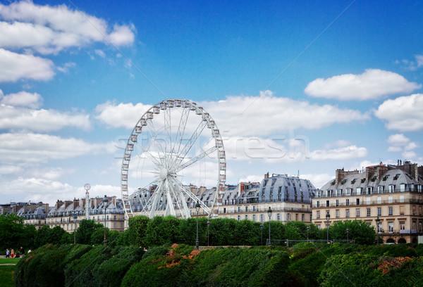 саду Париж газона паром колесо лет Сток-фото © neirfy