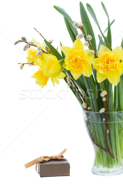 bouquet of daffodils with catkins Stock photo © neirfy