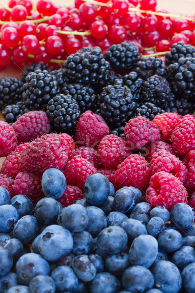 bluberry, raspberry, blackberry and red currrunt Stock photo © neirfy