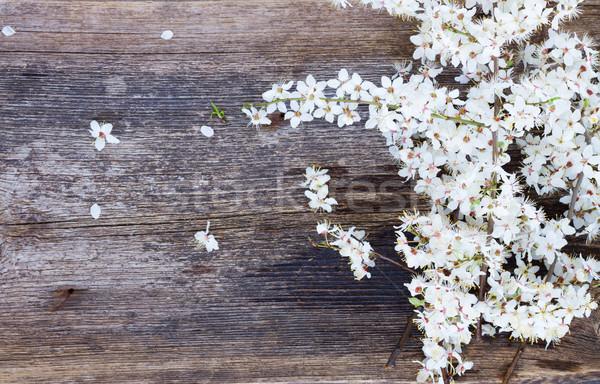 çiçekler taze beyaz ağaç ahşap masa Stok fotoğraf © neirfy