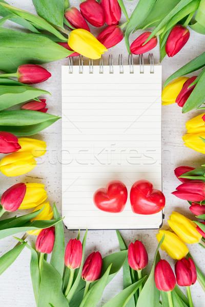 букет желтый Purple красный тюльпаны свежие Сток-фото © neirfy