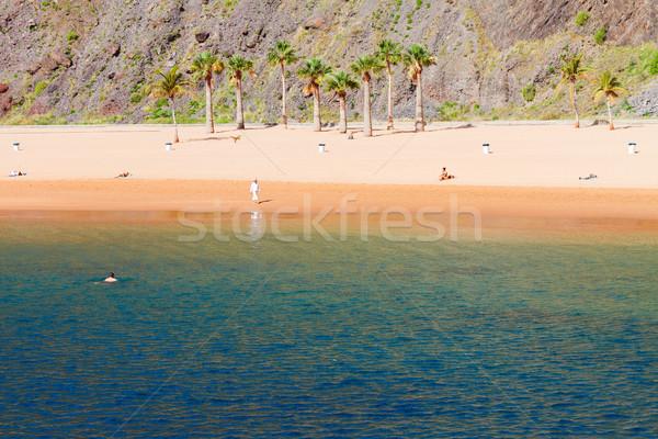 Plaj tenerife yaz gökyüzü ağaç Stok fotoğraf © neirfy