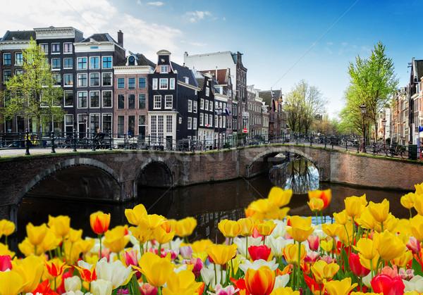 Casas Amsterdam Holanda ponte canal tulipas Foto stock © neirfy