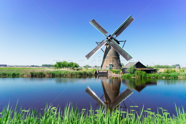 Nederlands windmolen rivier traditioneel reflectie zomer Stockfoto © neirfy