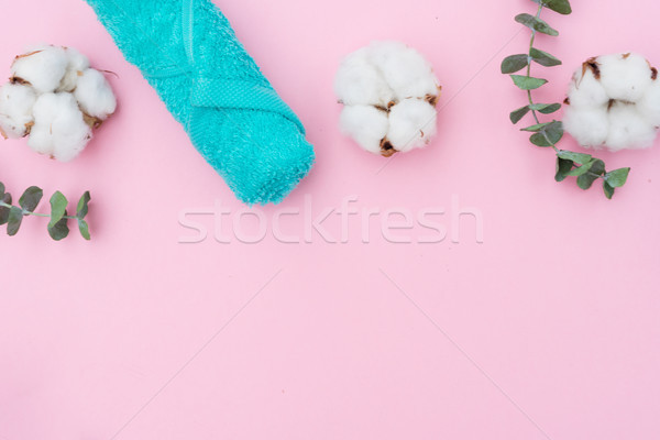 Güzellik pamuk yeşil yaprakları çiçek deniz Stok fotoğraf © neirfy
