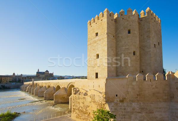 Foto stock: Torre · Espanha · romano · ponte · céu · paisagem