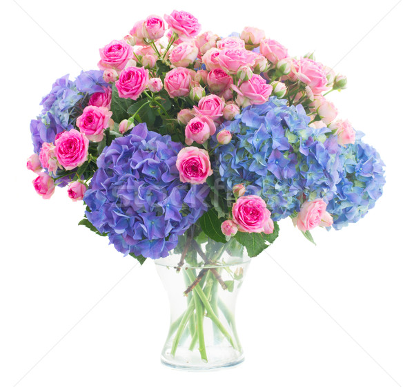 Сток-фото: букет · свежие · розовый · роз · синий · цветы