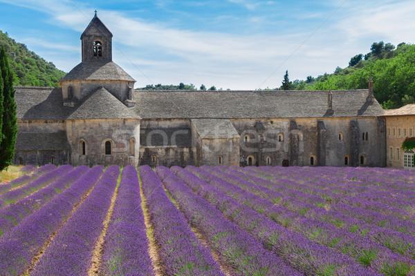 Abdij lavendel veld Frankrijk hemel bloem Stockfoto © neirfy