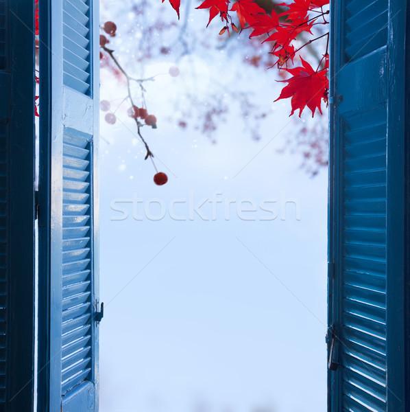 Fereastră cădea grădină cameră deschide albastru Imagine de stoc © neirfy