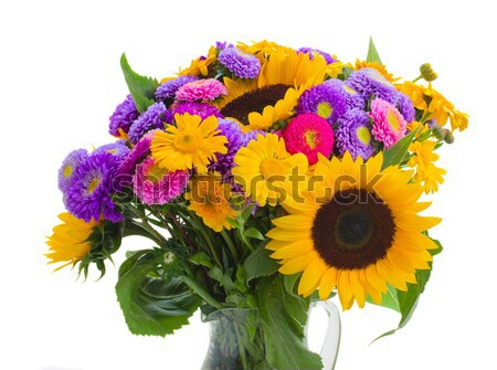 aster and sunflowers Stock photo © neirfy
