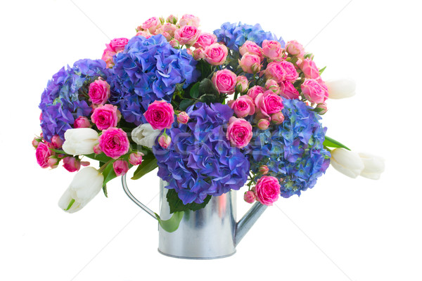 boquet of white tulips, pink roses and blue hortensia flowers Stock photo © neirfy
