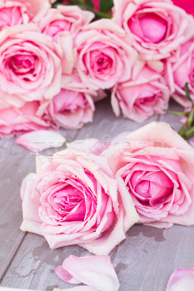 pink  roses  on table Stock photo © neirfy