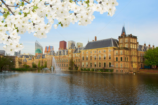 Holandés parlamento Holanda vista árbol flores Foto stock © neirfy