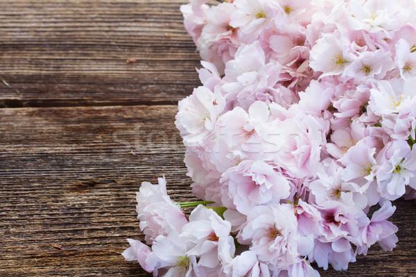 Kiraz çiçekler taze pembe ahşap Stok fotoğraf © neirfy