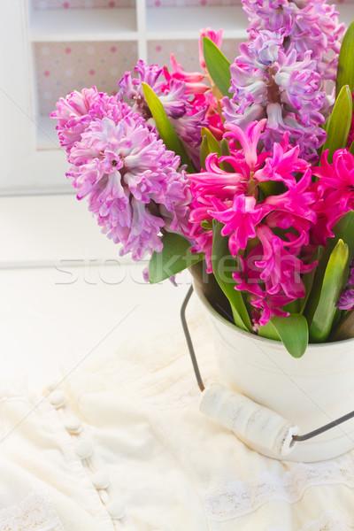 Roz Violet Zambila Colorat Flori Oală Imagine De