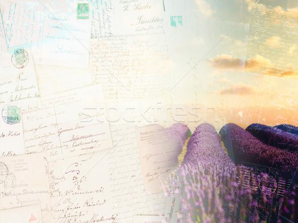 Lawendowe pole pocztówkę vintage rząd lata Błękitne niebo Zdjęcia stock © neirfy