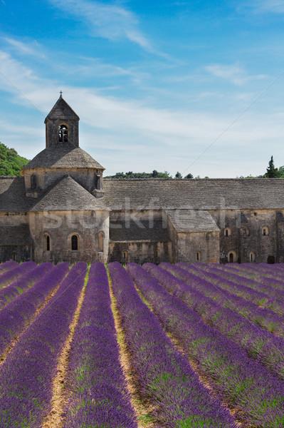 Manastır Fransa görmek lavanta yaz Stok fotoğraf © neirfy