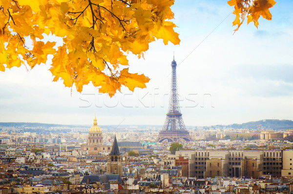 skyline of Paris with eiffel tower Stock photo © neirfy