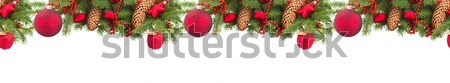 Evergreen Rood christmas bal witte Stockfoto © neirfy