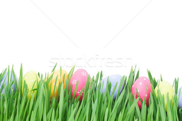 Stok fotoğraf: Paskalya · yumurtası · çim · lale · yalıtılmış · beyaz