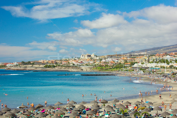 Tenerife İspanya panoramik görmek plaj dağ Stok fotoğraf © neirfy