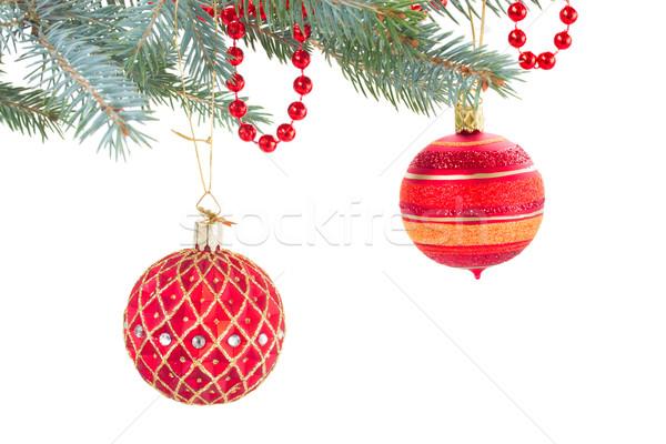 Decorato evergreen Natale isolato Foto d'archivio © neirfy