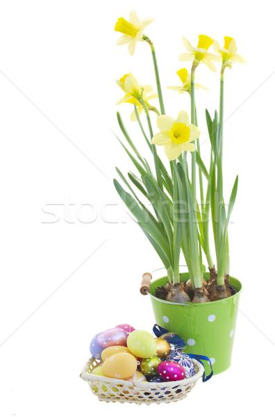 Halom húsvéti tojások nárciszok nárcisz virágok izolált Stock fotó © neirfy