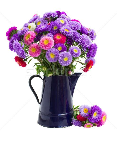 aster flowers Stock photo © neirfy