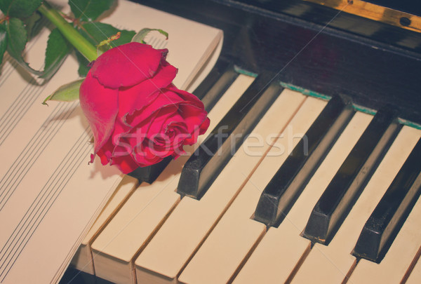 red rose with notes paper on piano Stock photo © neirfy