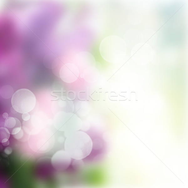 abstract garden background Stock photo © neirfy