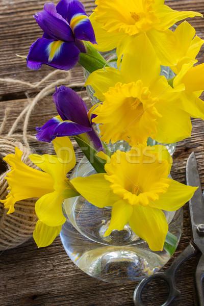 Пасху Daffodil желтый синий деревянный стол цветок Сток-фото © neirfy