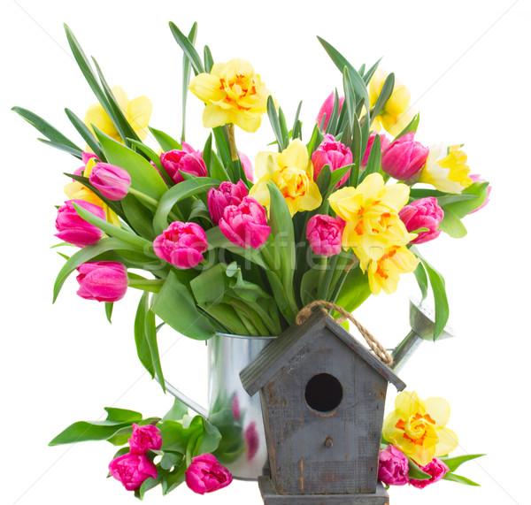 Bos tulpen narcissen vaas vers roze Stockfoto © neirfy