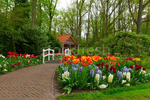 Hut voorjaar tuin steen pad Stockfoto © neirfy