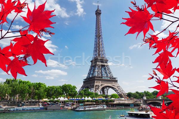Eiffel Tower and Paris cityscape Stock photo © neirfy