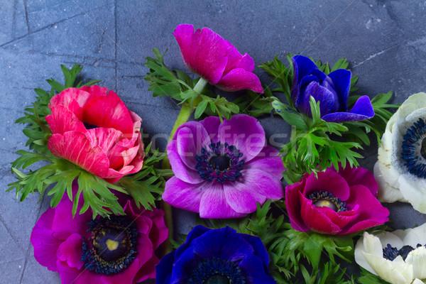 çiçekler taş taze renkli Paskalya Stok fotoğraf © neirfy