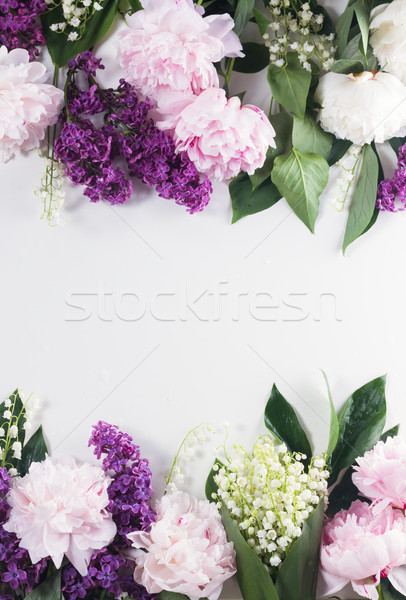 Floral borders Stock photo © neirfy