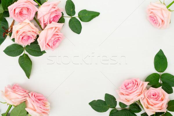 Taze gül çiçekler çerçeve tablo üzerinde Stok fotoğraf © neirfy