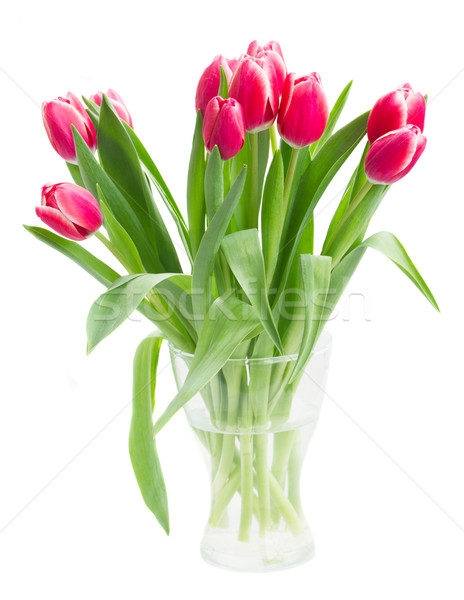 bouquet of    tulip flowers in vase Stock photo © neirfy
