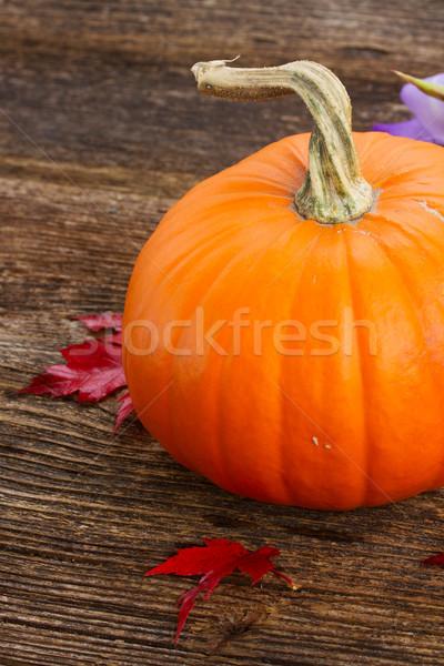 тыква таблице один оранжевый красный осень Сток-фото © neirfy