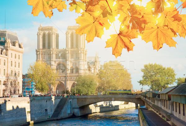Cathédrale Notre-Dame église Paris France automne Photo stock © neirfy