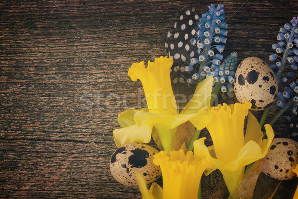 Narcisos huevos narciso flores retro Foto stock © neirfy
