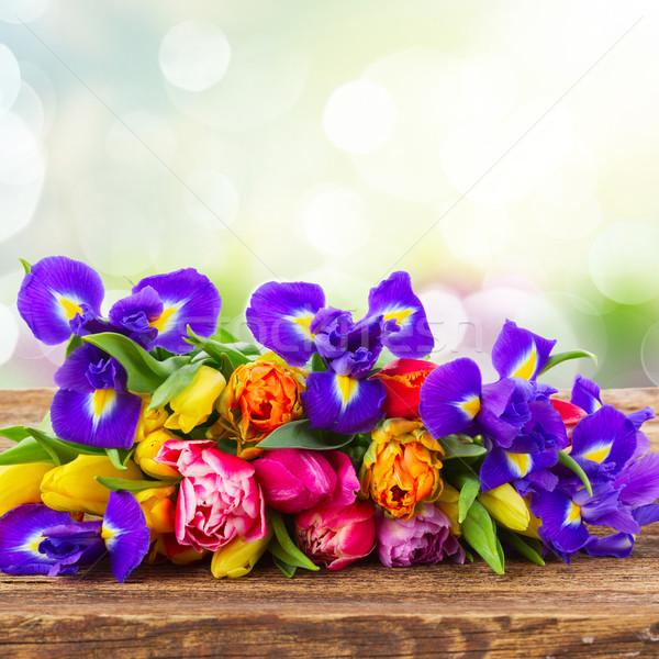 Primavera tulipani fresche legno verde giardino Foto d'archivio © neirfy