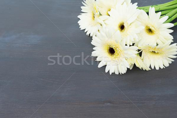 Beige gerbera flowers Stock photo © neirfy