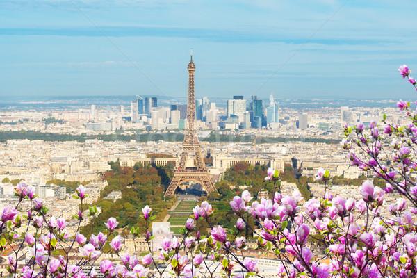 Eiffel-torony Párizs városkép fölött tavasz Franciaország Stock fotó © neirfy