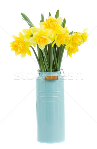 bouquet of narcissus in vase Stock photo © neirfy