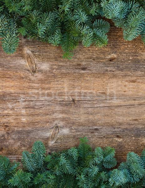 Natale fresche evergreen albero rami frame Foto d'archivio © neirfy