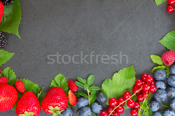 frame  of fresh berries Stock photo © neirfy